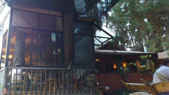 Cascada de las Animas: Restaurante Tribu