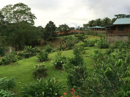 Dream Valley Jungle Lodge : View from our room (#2)