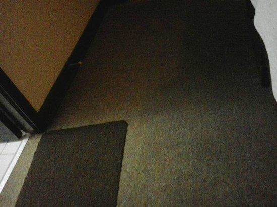 Bayview Hotel: Carpete sujo e mofado.