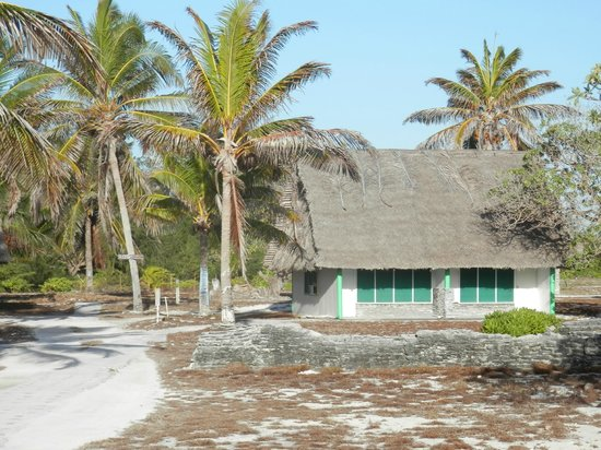 Captain Cook Hotel : Cabin