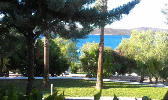 Bodrum Holiday Resort & Spa : Park hotelowy
