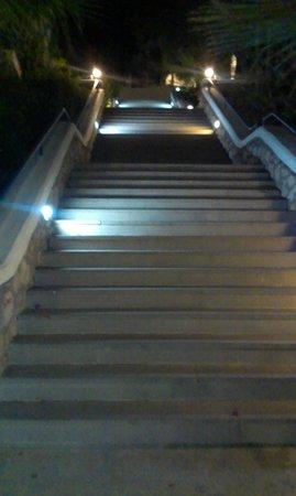 Bodrum Holiday Resort & Spa : schody prowadzace na plaże