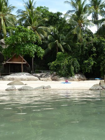 Sensi Paradise: Small beach links van het restaurant