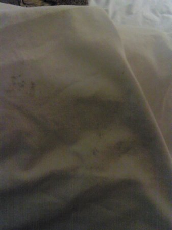 Ramada Hotel & Suites Warner Robins : mold/mildew stains on pillow cases