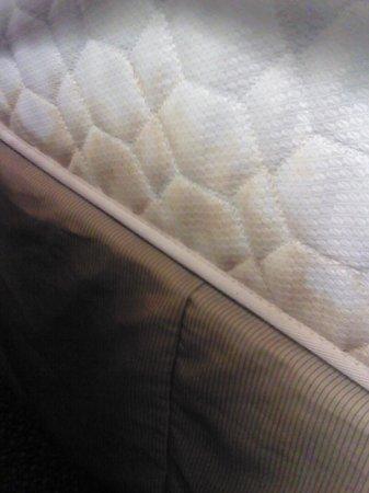 Ramada Hotel & Suites Warner Robins: urine stains on mattress