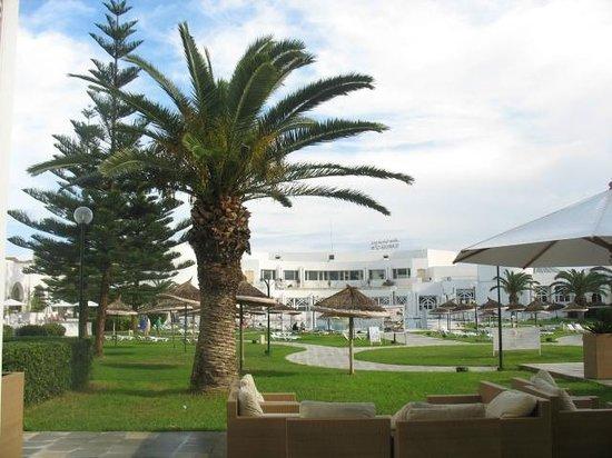 Tej Marhaba Hotel : pool side