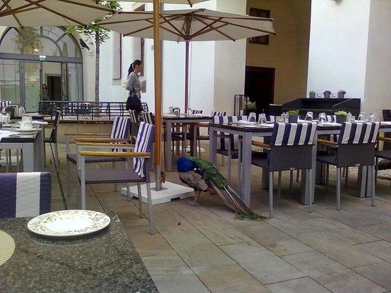 Augustine, a Luxury Collection Hotel, Prague : Patio interno ao lado do restaurante