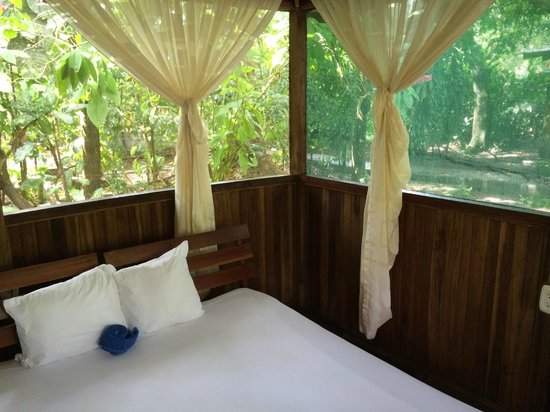 Turtle Beach Lodge : rooms