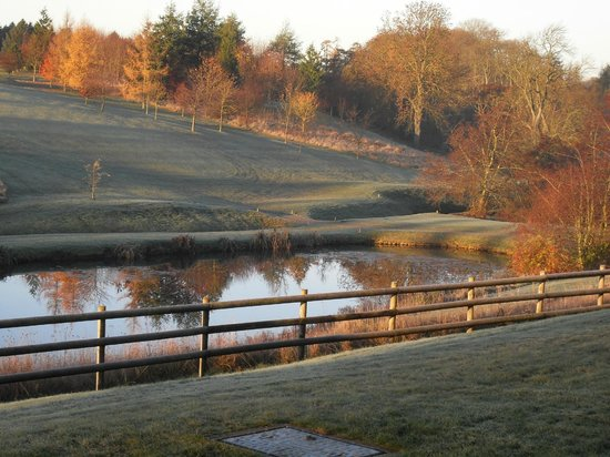 Greetham Valley Hotel: A room with a view
