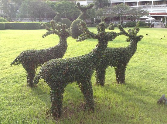 Centara Grand Beach Resort & Villas Hua Hin: Topiary in the garden