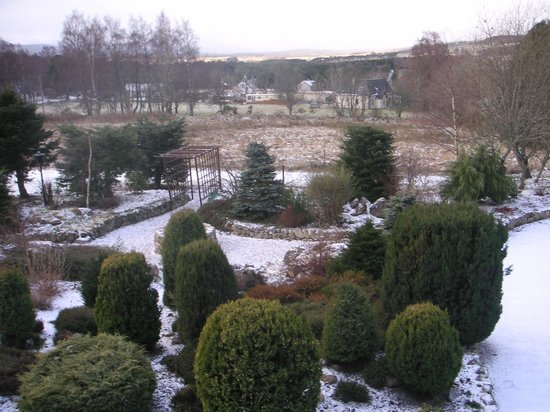 Rosegrove Guest House : View from guest room over the landscaped garden