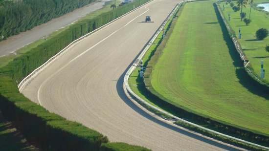 Stadium Hotel: Love the race track