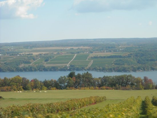 The Inn at Glenora Wine Cellars: Seneca Lake