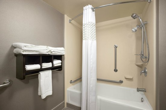 Hampton Inn Cadillac: Accessible Room - Bathroom