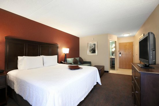 Hampton Inn Chicago-Midway Airport : King Guest Room with Sofa Bed