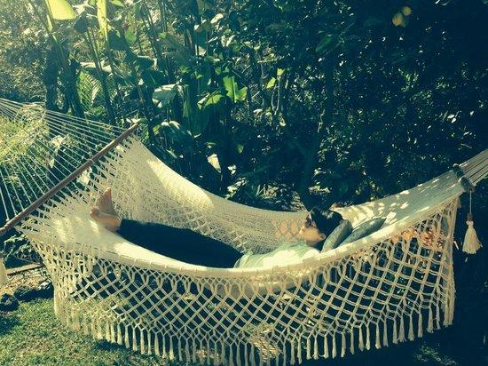 Casa de la Vida: Hammock relaxation