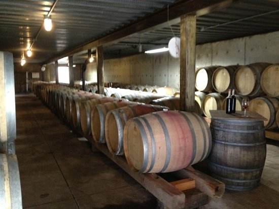 Airlie Winery: Barrel Room