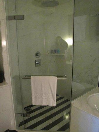 The Address Dubai Mall : Bathroom rainfall shower