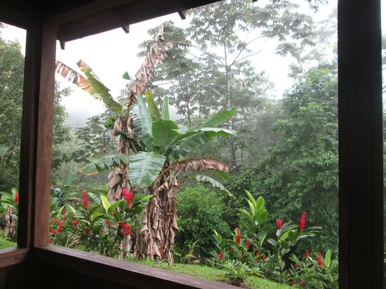 Hotel Lomas del Volcan : view from back porch