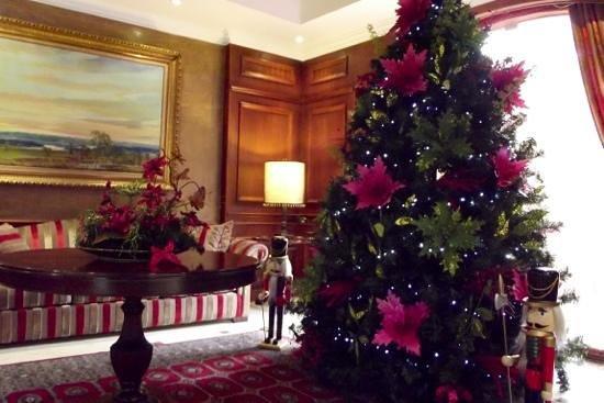 Park 10 Hotel : Navidad en el Park 10