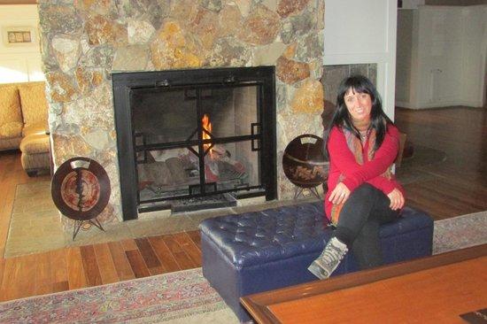 Alto Calafate Hotel Patagonico: El lobby