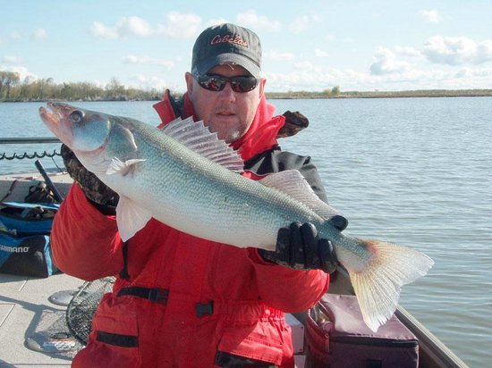 Bridgeview Bed & Breakfast: Great fishing on the Red river
