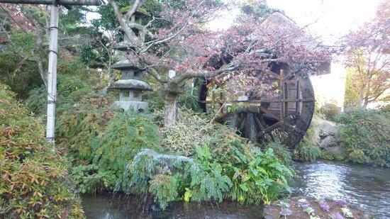 Fujiya Hotel : 日本庭園