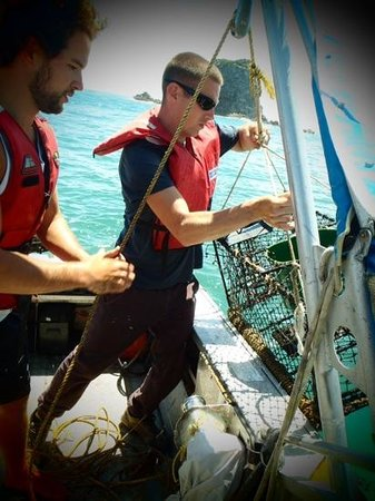 Bazil's Hostel & Surf School: A first experience for luke aboard the owners fishing boat assisting in the crayfish antics!