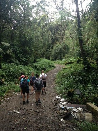 Sendero Los Quetzales (The Quetzales Trail) : Start of the trail - most of it wasn't this flat or smooth