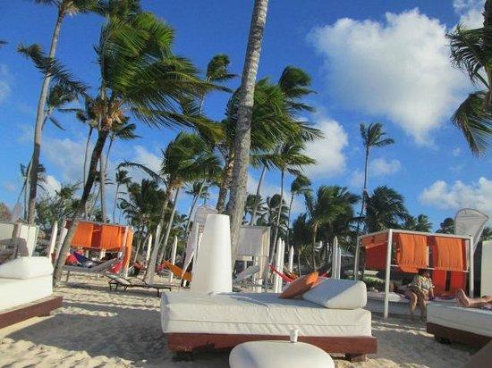 Paradisus Punta Cana : Beautiful!