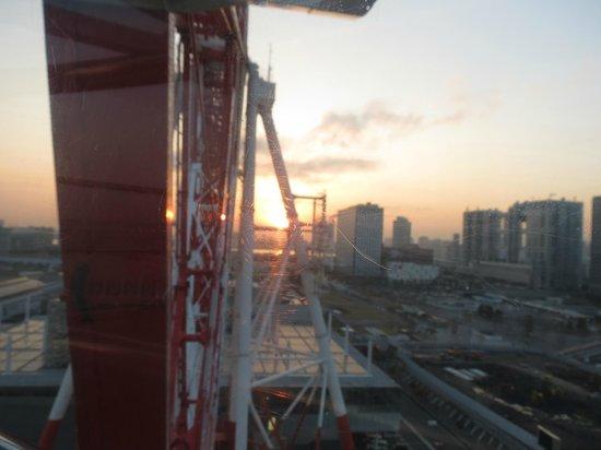 Pallete Town Big Ferris Wheel: x