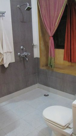 Hotel Tokyo Palace Jaisalmer : The bathroom which made us happy!
