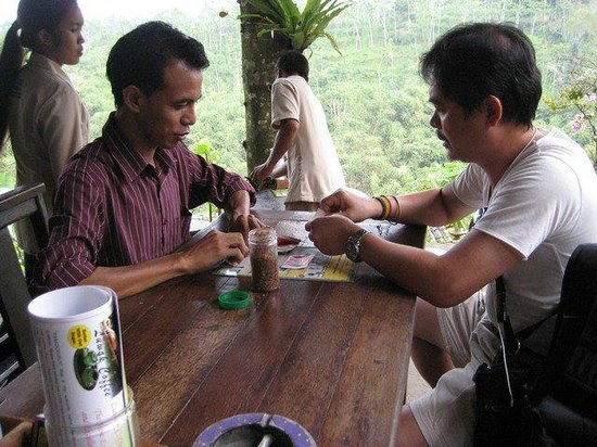 The Bali Driver & Tour Guide: Coffee Luwak
