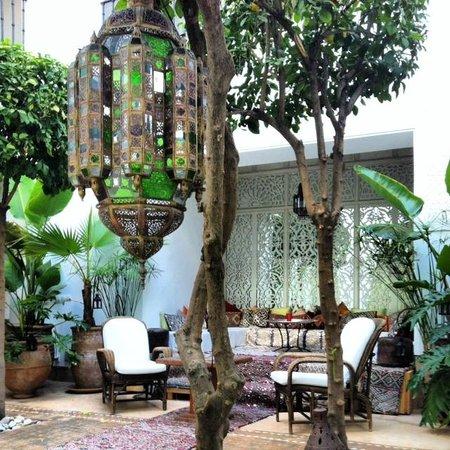 Riad Camilia, Maison d'hôtes : A true oasis.