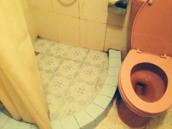 Lotus Lodge: Dirty toilet on arrival still same 5 days later