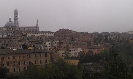 Palazzo Ravizza: Great view