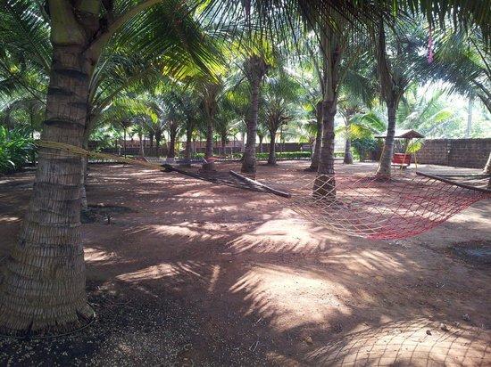 Madachya Banat: Play area..we had fun playing badminton..