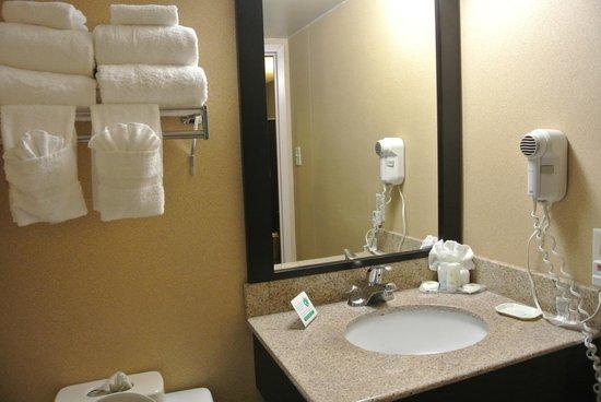 Comfort Inn & Suites West Atlantic City : ванная