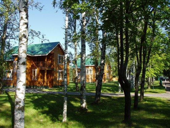 Hotel Recreation Zavidovo: Аллея возле коттеджа