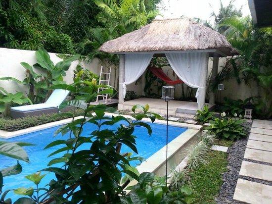 Enigma Bali Villas: pool
