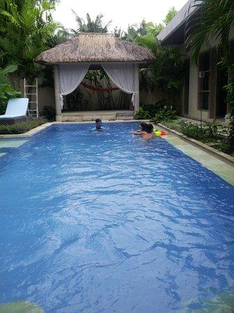 Enigma Bali Villas: clean pool