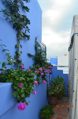 Hotel Dar Manara: garden