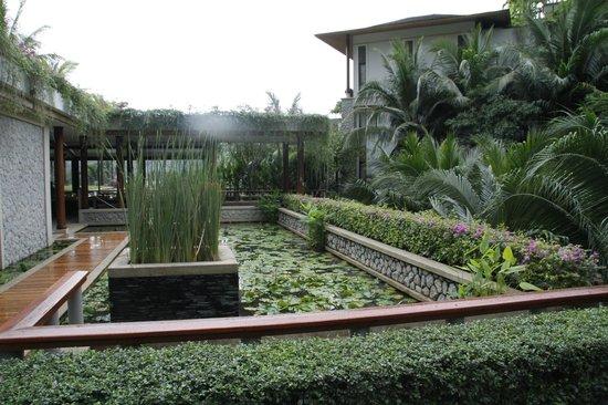 Andara Resort and Villas : Lush tropical grounds