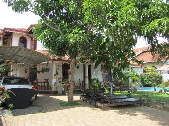 Serendib Guest House: Garden view