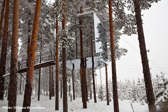 Norrbotten County, Sweden: Treehotel - Swedish Lapland