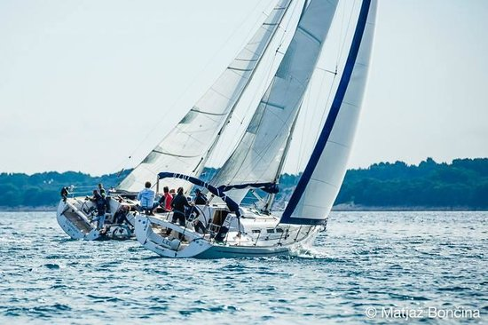 Sukosan, Croacia: Impression Sailing Week 2013