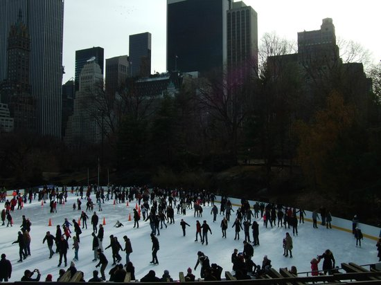 New York Highly Rated Tours : Ice Rink Central Park