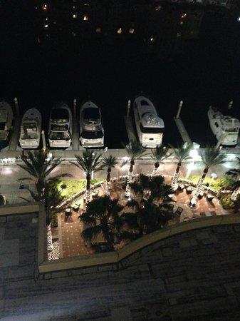 Tampa Marriott Waterside Hotel & Marina: Night view to Marina
