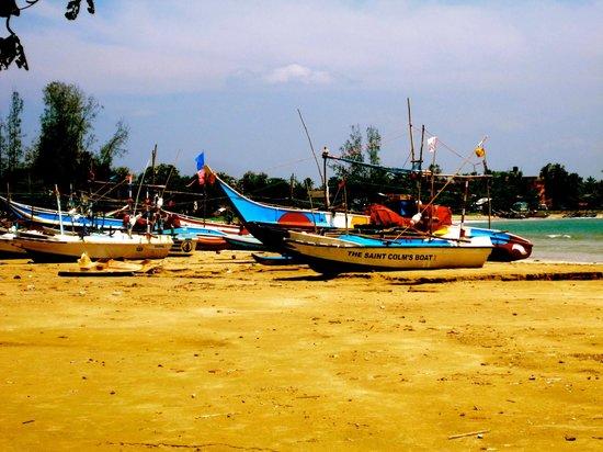 Ayurveda Paragon: Beach