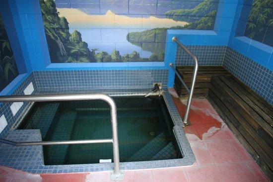MALFROY motor lodge Rotorua - Accommodation and Mineral Pool: The thermal bath